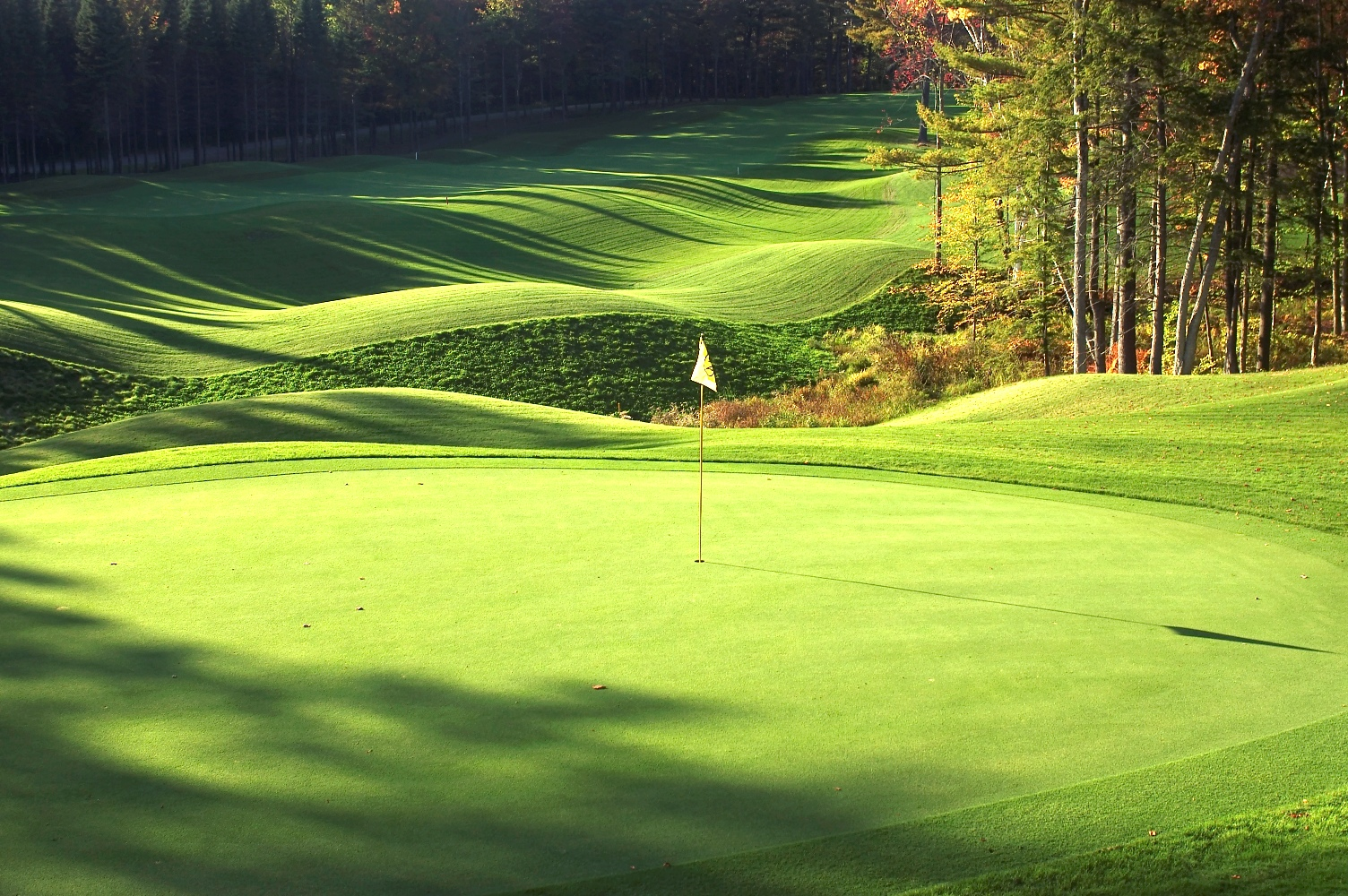Great News for Montcalm Golf Club!